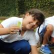 horta_santa_clara (12)