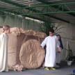 Pastoral_Via Sacra Ressureição de Jesus (4) (Medium)