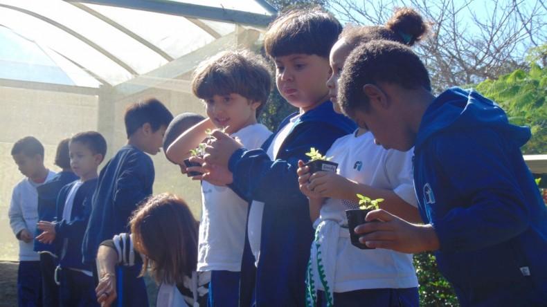 Infantil V Gratidão_Horta (11) (Medium)