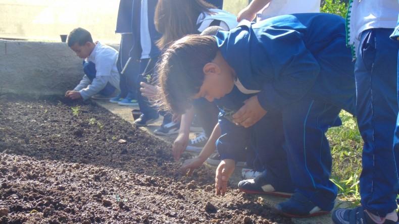 Infantil V Gratidão_Horta (13) (Medium)