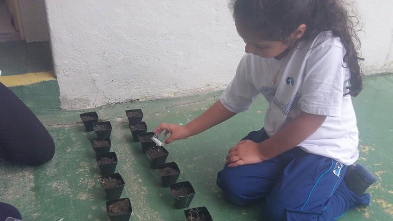 Infantil V Gratidão_Horta (3) (Medium)