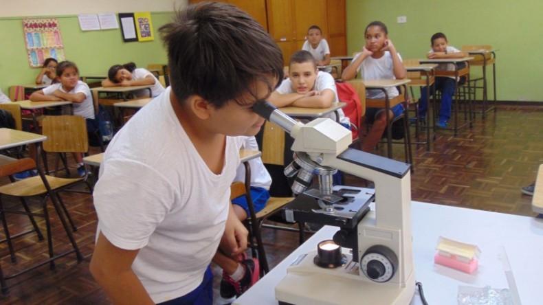 5ºano_microorganismos (1) (Small)