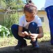 Infantil V Gratidão_Horta (17) (Medium)