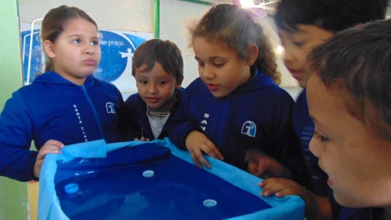 1ºano-salvando_os_bebês_tartarugas (4)