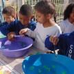 InfantilVGratidão_Atividades_de_matemática (8)