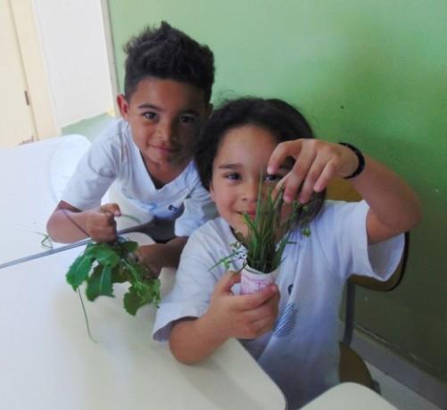 InfantilVObediência_Ikebanas (2) (Small)