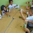 InfantilVObediência_Ikebanas (6) (Small)