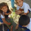 InfantilVObediência_Ikebanas (8) (Small)